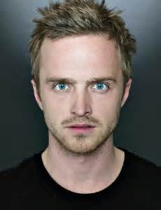 Hoxwell IT Dave as Aaron Paul