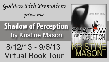 VBT Shadow of Perception Banner
