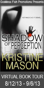 VBT Shadow of Perception Book Cover Banner