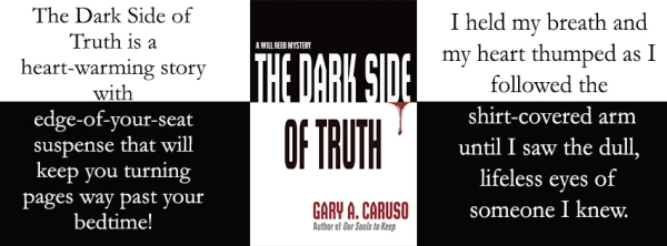Blog Tour banner 1 The Dark Side of Truth