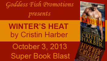 SBB Winters Heat Banner copy